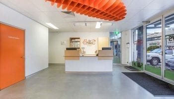 Dr Paws thrilled with Newcastle commercial fitout